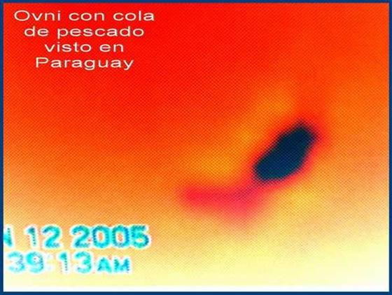 ufo fish_5 a