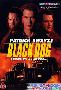 Chó Đen - Black Dog