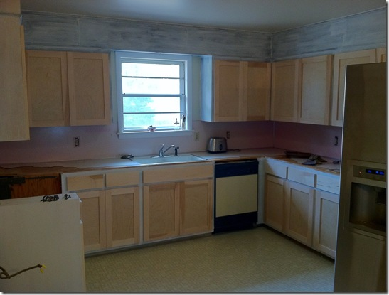 Kitchen Cabinets_3
