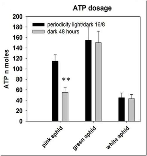ATP_dosage