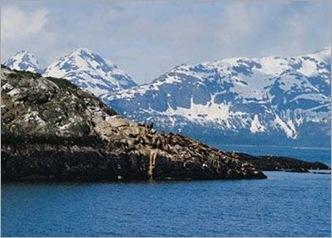 Glacier Bay 01