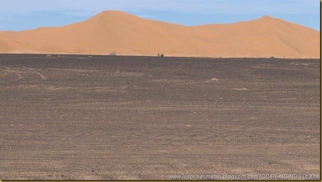 Desierto-412