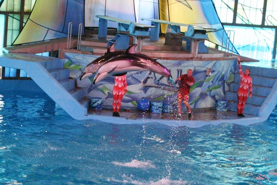 Sea World 171