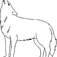 Wolf_6.jpg