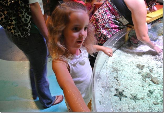 Sea Life Aquarium 229