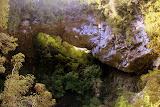 The Oparara Arch - Karamea, New Zealand