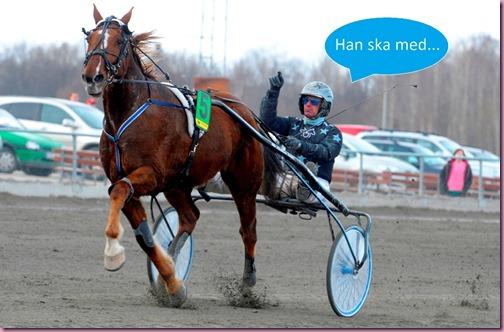 Foto: Martin Langels/ALN  Sundbyholm 20130329