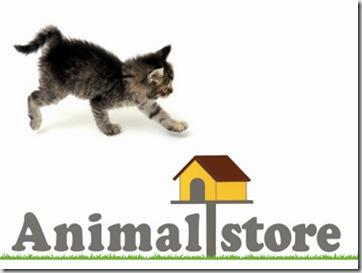 articoli-per-animali (2)