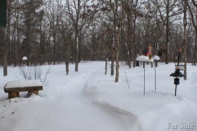 Jan 26th snow