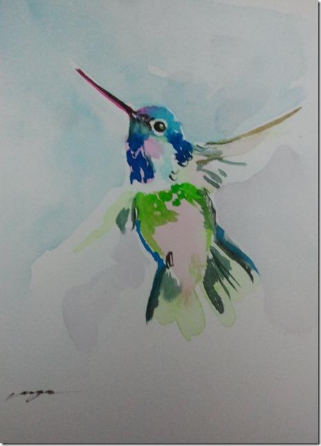 hummingbird free