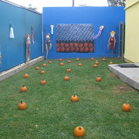On Campus Pumpkin Patch For The Pandas & Penguins(under 3)