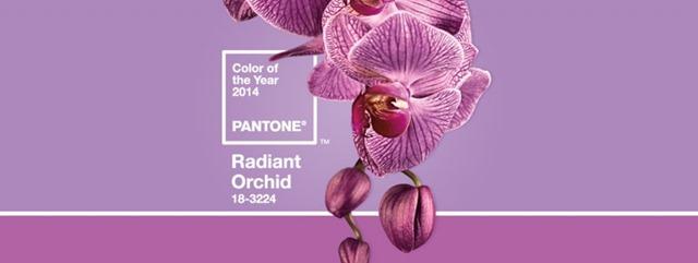 Pantone Radiant Orchid Palette