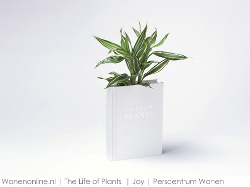 The-Life-of-Plants-1