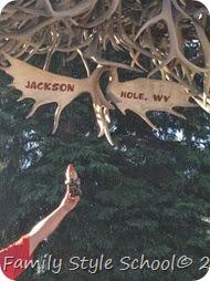 jackson hole1