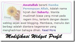 modifikasi widget profil blogger