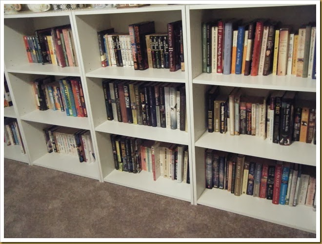 upstairs book shelves (2)