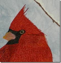 cardinal face