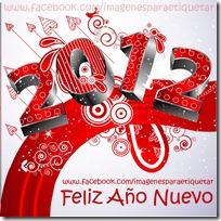 FELIZ 2012 (8)