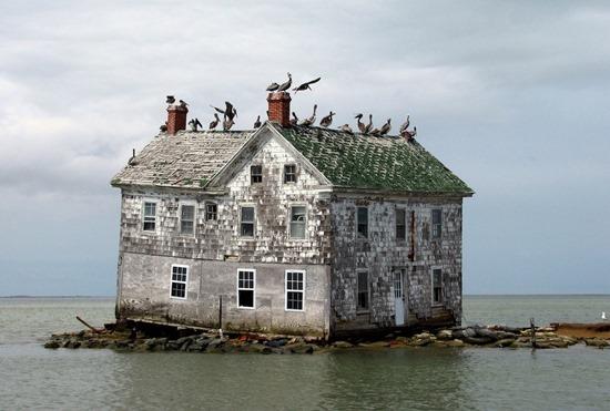 Ilha na Baía de Chesapeake Holanda