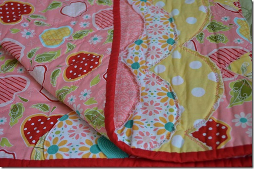 Riley Blake Quilt 016