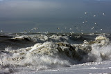 Rough seas at Napier