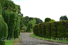 Glória Ishizaka -   Kyoto Botanical Garden 2012 - 101