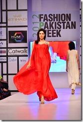Fashion Pakistan Week (2012) Pictures14