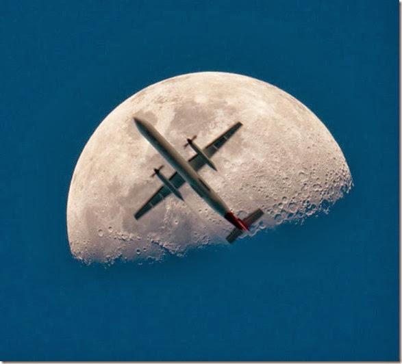 perfect-timing-photos-009