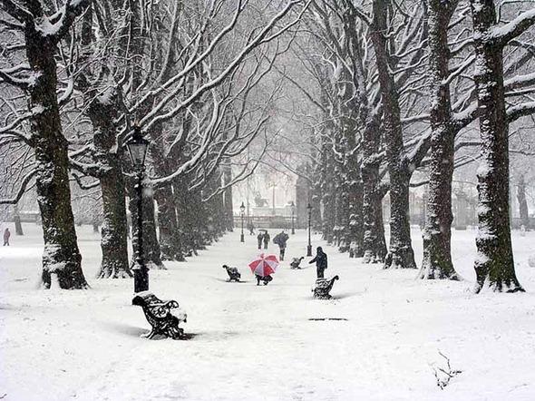 winter 31