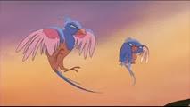 12 les oiseaux