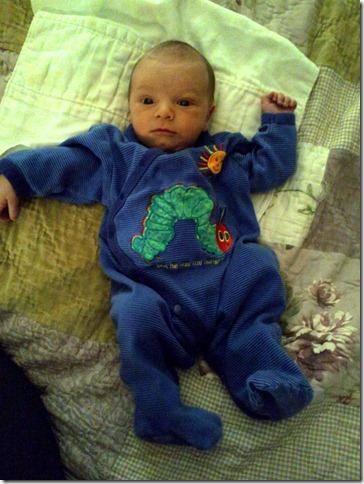 2012-02-07 Hungry Caterpillar Shane (3)
