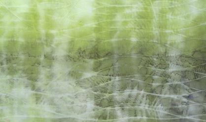 ECO PRINT Farn auf Wolle teilweise Eisenbeize