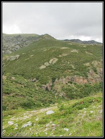 Picos 944