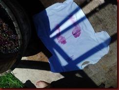 WW shirts