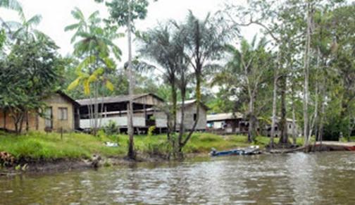 Reserva Extrativista do Rio Cajarí, Laranjal do Jari - Amapà