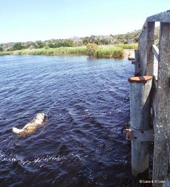 Munson crosses Tallow Creek