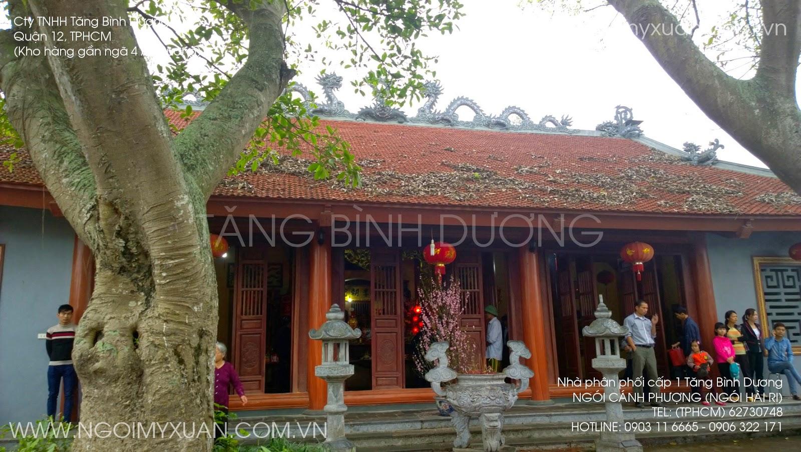 ngoi canh phuong (ngoi hai ri)