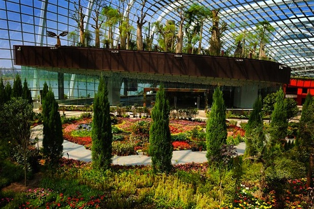 gardens by the bay by grant associates and wilkinson eyre architects 9
