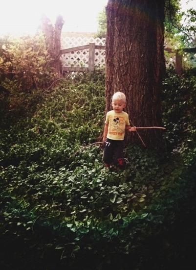 treeadventures1