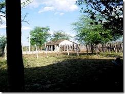 Ana Loureiro - Fazenda Turco em Delmiro Gouveia - Trabalhada
