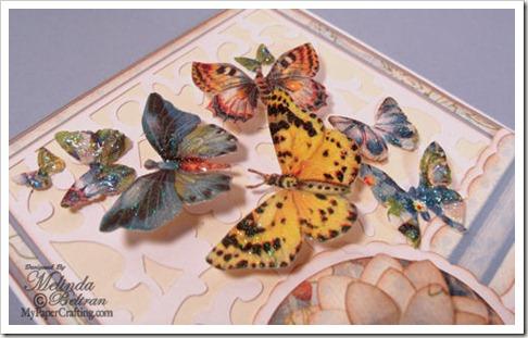 butterfly cu-500
