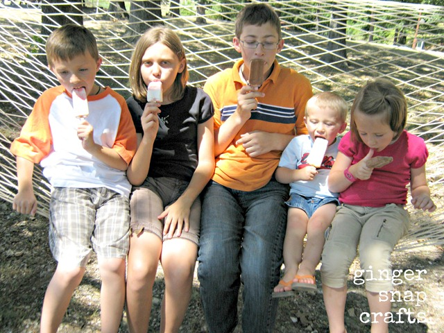TCBY frozen yogurt and national Hammock Day