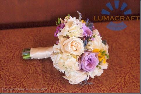 18_MG_2255-Lumacraft-800px