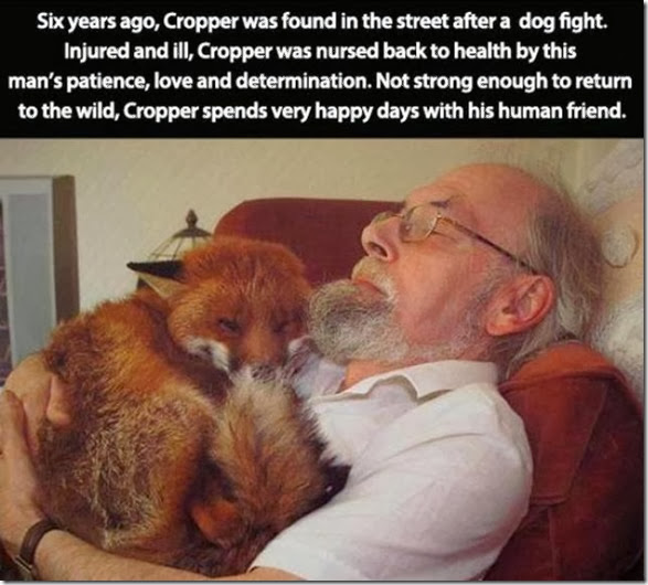 awesome-pet-owners-14