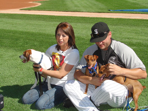 Jamie and Mark Buehrle shoot a video segment showcasing adoptable dogs, to be shown on the big screen during a White Sox home game at U.S. Cellular Field.  How cute are these dogs?