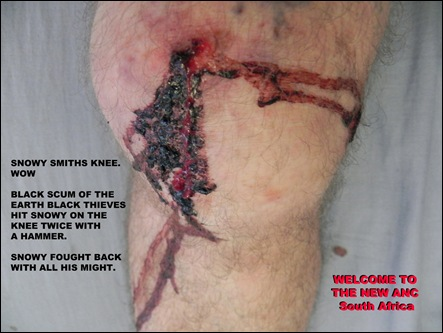 Smith Snowy Durban photographer attacked with ENTIRE APARTMENT BUILDING TENANTS WESTVILLE Feb52012 sun6am
