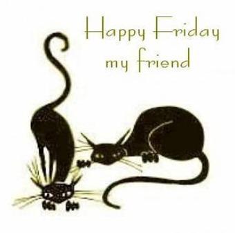 Fridayblackcats