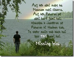 missing_you_sad_quotes