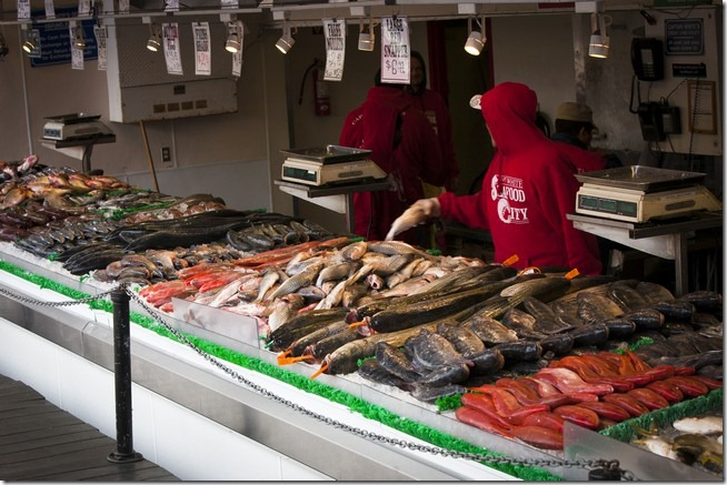 Main Avenue Fish Market-2