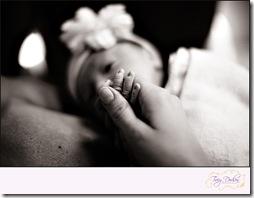 Noelle Nunez Birth   528VANILLA